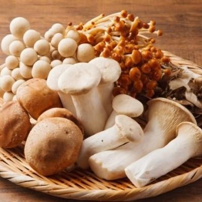 ダイエットで役立つキノコ類の種類と栄養について