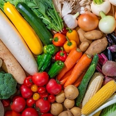 食物繊維と食欲の関係